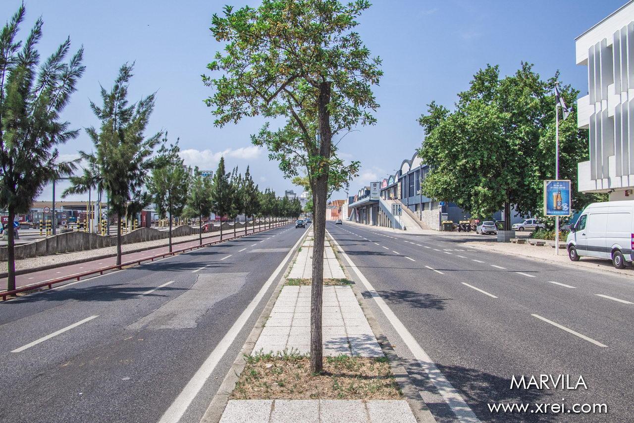 The coastal avenues connecting Parque das Nações to Lisbon downtown