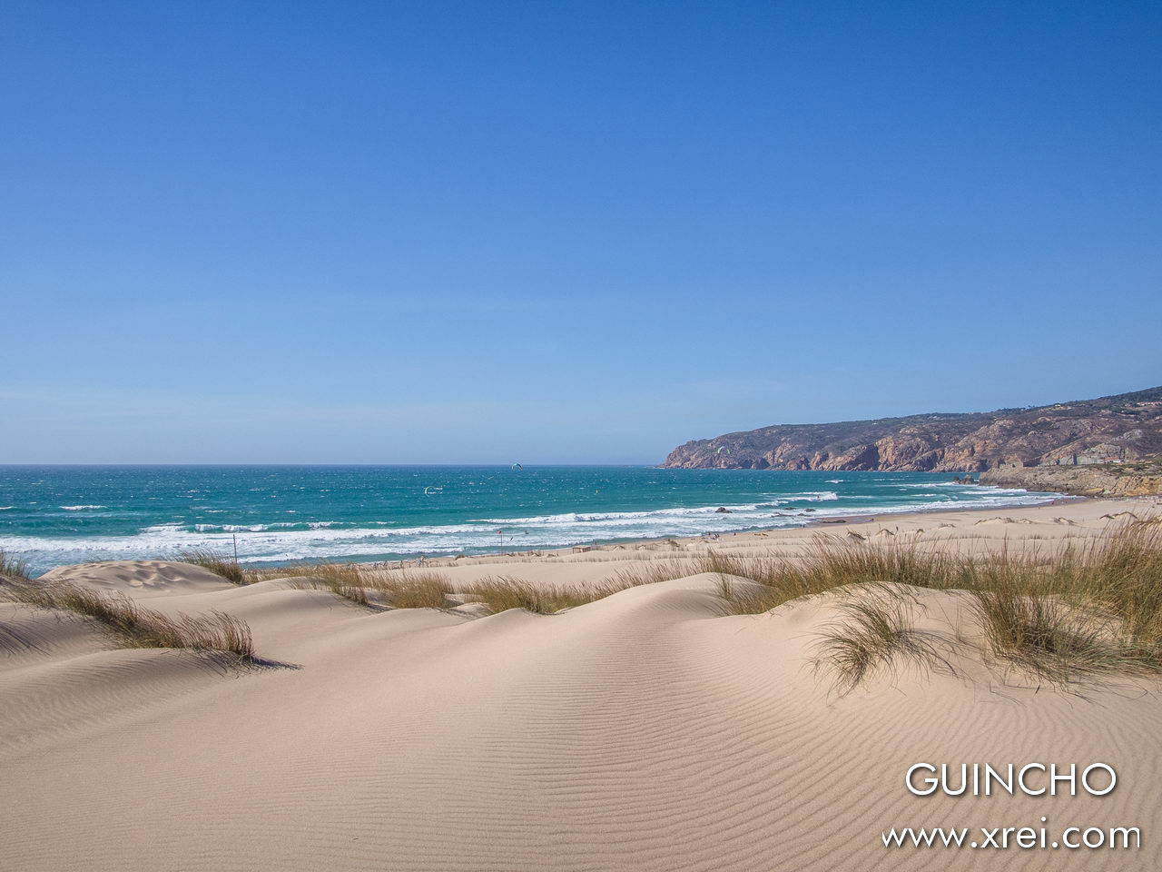 The surroundings of Guincho beach are composed of a landscape of dunes, undergrowth that mixes with the hillside and mountain pines