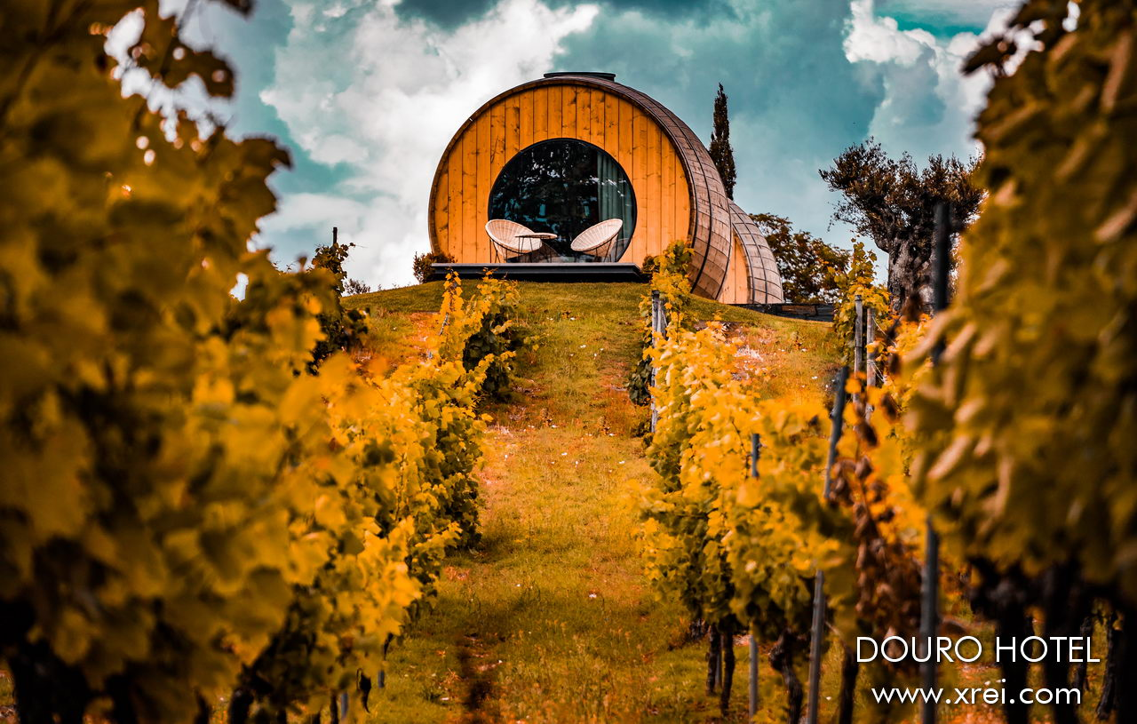 Quinta da Pacheca in the Douro, with rooms transformed from wine barrels, inserted in the middle of the vineyard